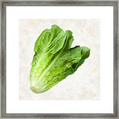 Romain Lettuce  Framed Print by Danny Smythe