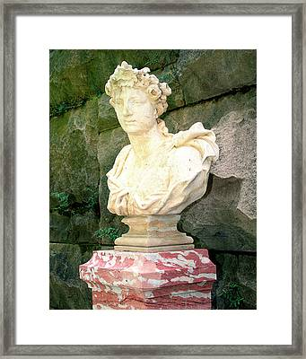 Roman Biltmore Asheville Nc Framed Print