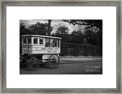 Roman Candy In Black And White Framed Print by Kathleen K Parker