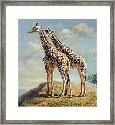 Romance In Africa - Love Among Giraffes Framed Print by Svitozar Nenyuk