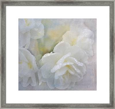 Romance In White Framed Print