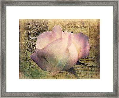 Romance Of The Rose Framed Print