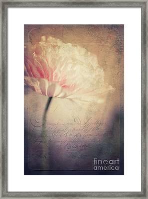 Romance Framed Print by Priska Wettstein