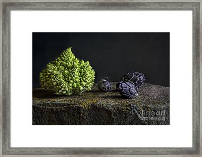 Romanesco Framed Print by Elena Nosyreva