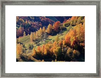 Romania, Transylvania, Carpathian Framed Print