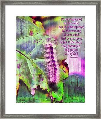 Romans 12 2 Framed Print by Michelle Greene Wheeler