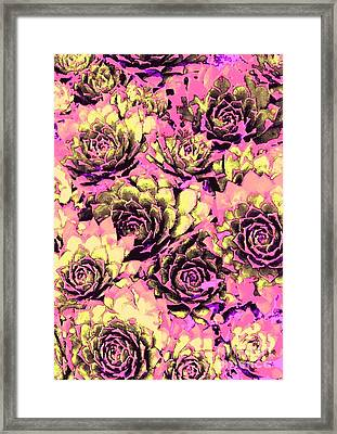 Romantic Chicks Framed Print by Ann Johndro-Collins