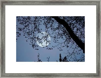 Framed Print featuring the photograph Romantic Moon  by Angel Jesus De la Fuente