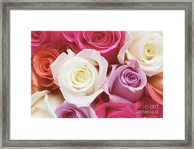 Romantic Rose Garden Framed Print