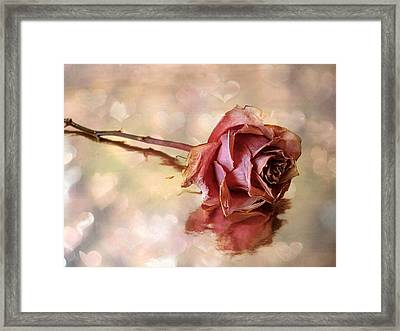 Romantic Rose Framed Print by Jessica Jenney