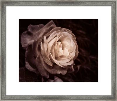 Romantica Framed Print by Mary Zeman