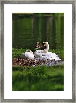 Romeo And Juliet In Boston Framed Print