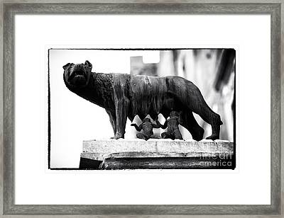 Romulus And Remus Framed Print by John Rizzuto