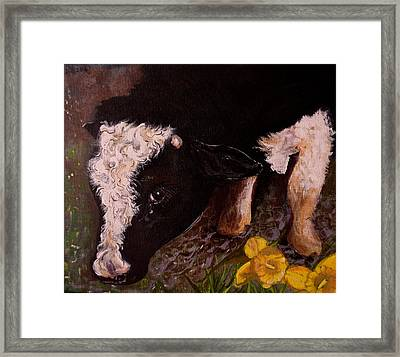Ron The Bull Framed Print