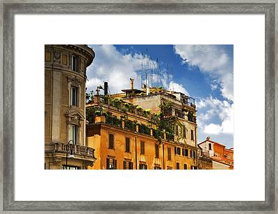 Framed Print featuring the photograph Rooftop Garden by Matthew Ahola