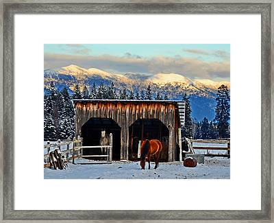 Room With A View Framed Print by Annie Pflueger