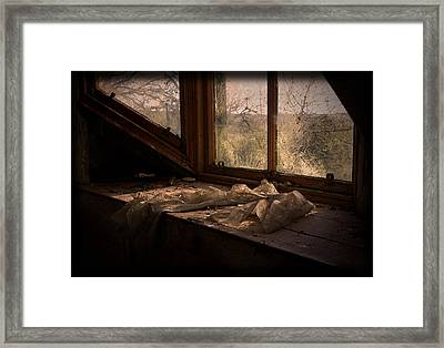 Room With A View Framed Print by Liz  Alderdice