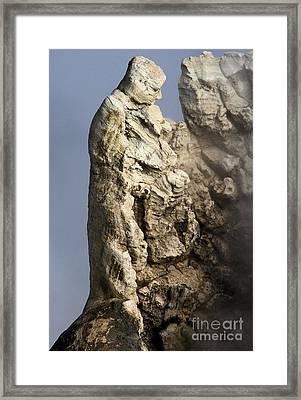 Roosevelt Geyser Framed Print by Adam Jewell