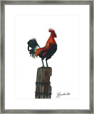 Rooster Beyond The Morning Framed Print by J Ferwerda
