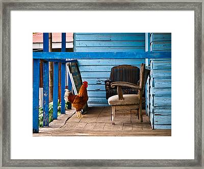 Rooster On Porch  Framed Print by Robert Watcher