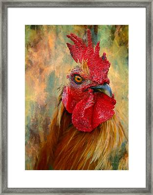 Rooster On The Loose - Abstract Realism Framed Print