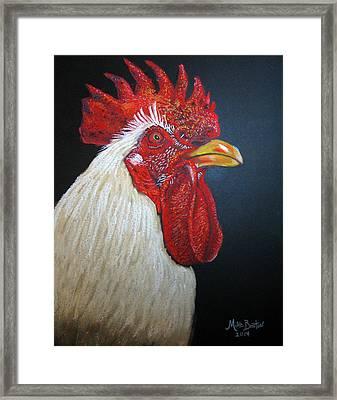 Rooster Profile#2 Framed Print