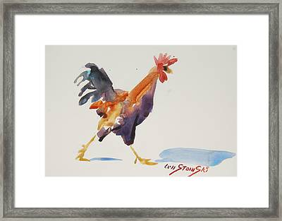 Rooster Study 2 Framed Print