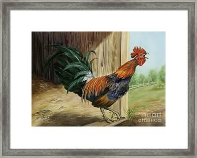 Rooster Framed Print by Summer Celeste