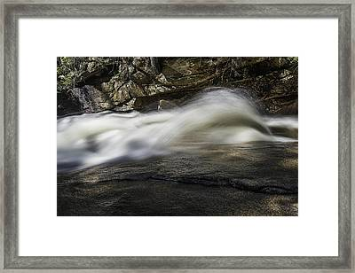 Rooster Tail Framed Print