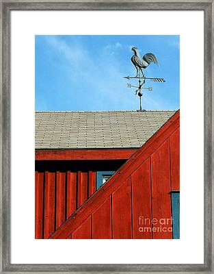 Rooster Weathervane Framed Print by Sabrina L Ryan