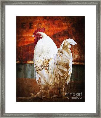 Rooster With An Attitude Framed Print by Lee Craig