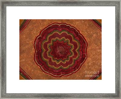 Root Flower Framed Print