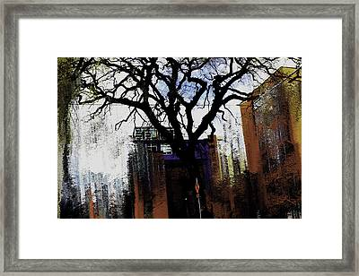 Rooted In The Unstable Framed Print