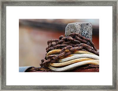 Rope And Chain Framed Print by Wendy Wilton
