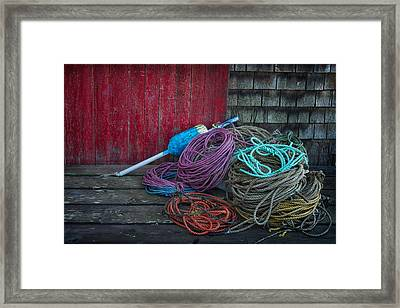 Ropes And Buoy Framed Print by Darylann Leonard Photography
