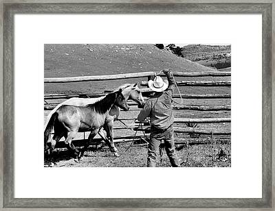 Roping The Young Ones Framed Print