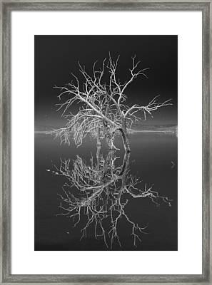 Rorrim Rorrim Framed Print by Scott Campbell