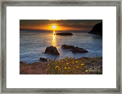 Rosario Head Sunset Framed Print by Mark Kiver