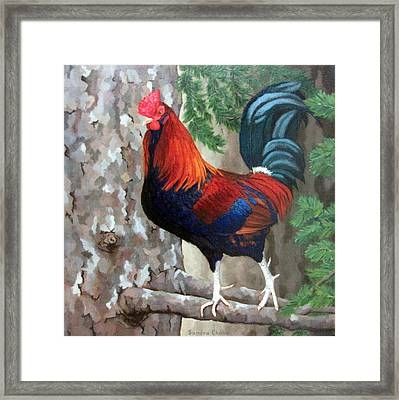 Roscoe The Rooster Framed Print