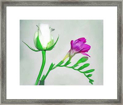 Rose And Fuschia Fusion Framed Print by Hal Halli