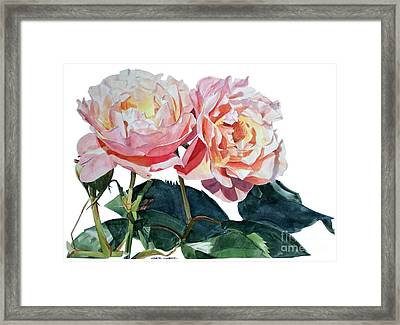 Pink And Yellow Rose Anne Framed Print