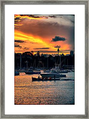 Rose Bay Marina Framed Print by Andrei SKY