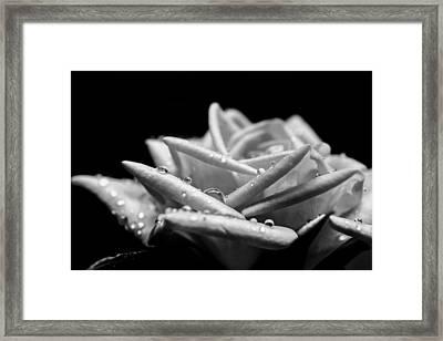 Rose Beads Framed Print by Mark Hazelton