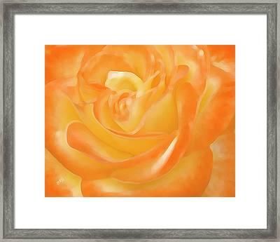 Rose Framed Print by Ben and Raisa Gertsberg