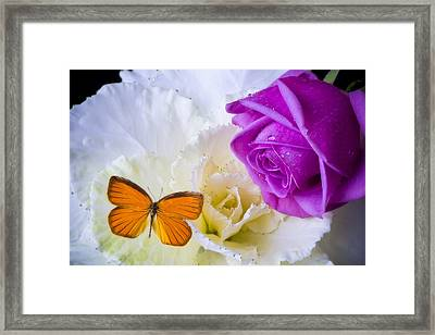 Rose Butterfly With Kale Framed Print by Garry Gay