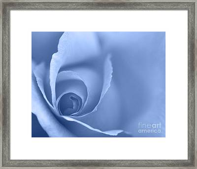 Rose Close Up - Blue Framed Print by Natalie Kinnear
