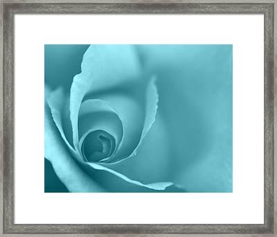 Rose Close Up - Turquoise Framed Print