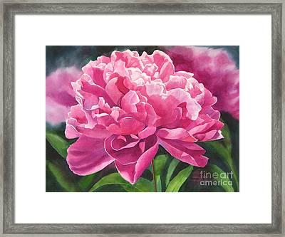 Rose Colored Peony Blossom Framed Print