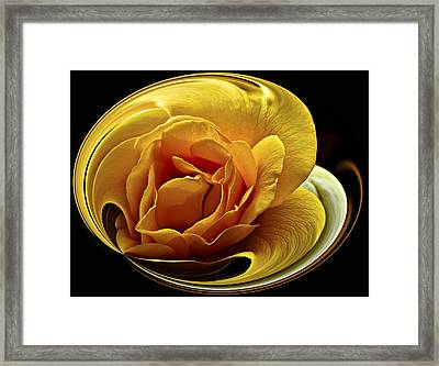 Rose Cup Framed Print