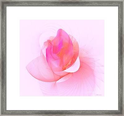 Rose Framed Print by Elizabeth McTaggart